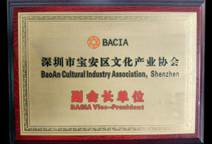 深圳市宝安区文化产业 <br/>协会副会长单位